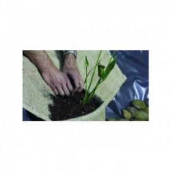 PLANTATION EN SAC (UNITE)