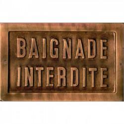 PLAQUE -BAIGNADE INTERDITE- 14 X 9 CM