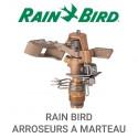 RAIN BIRD ARROSEUR A MARTEAU
